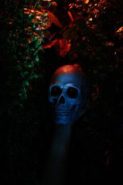 Halloween Horror Concept