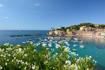 Summer view of Baia del Silenzio. Sestri Levante. Liguria. Italy