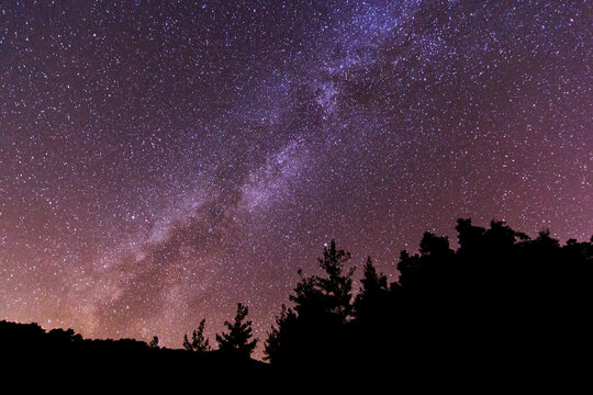 Milky Way With Silhouetted Trees