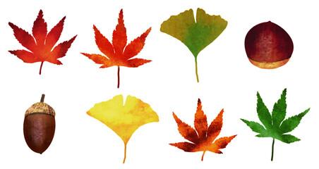 紅葉とどんぐりと栗の秋のイラスト素材セット
