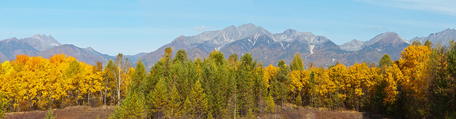 Panoramic view on a beautiful autumn forest of coniferous and deciduous trees on the background of mountains range on a sunny September day. Autumn traveling at a highland