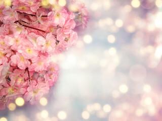 Fototapeta spring background flowering white sakura cherry flowers tree and abstract bokeh