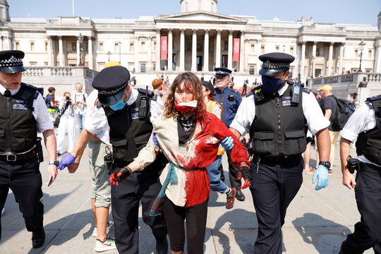 Protest over the impact of the coronavirus disease (COVID-19) on Brazil's indigenous communities in London