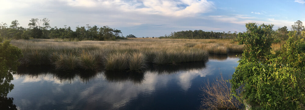 Marshes in the Roanoke Island Marshes Dedicated Preserve in North Carolina