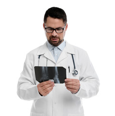 Orthopedist holding X-ray picture on white background