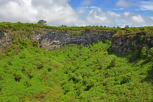 """One of two extinct volcanic craters of """"Los Gemelos"""" or twins with lush vegetation on Santa Cruz island, Galapagos islands national park, Ecuador."""