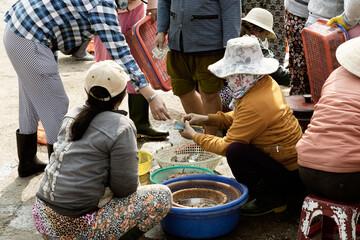Vietnamese women selling fish at the outskirts of Da Nang, Vietnam