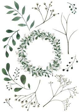 Eucalyptus and gypsophila (baby's breath) wreath and flower elements Набор «Эвкалипт и Гипсофила»