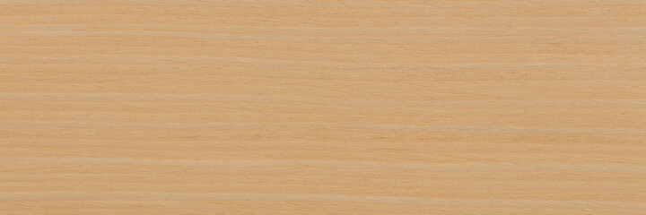 Natural ash veneer background in adorable light beige color. Natural wood texture, pattern of a long veneer sheet.