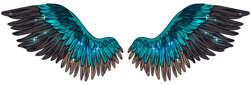 Beautiful magic shiny tuquoise brown magic angel wings, vector