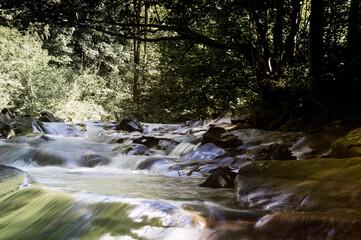 Fototapeta Krajobraz kaskady wodne z dużymi głazami i roślinnością na brzegach