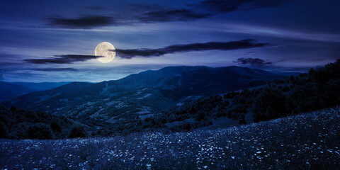 pasture on a sunny day in mountains at night. wonderful countryside landscape of carpathians in full moon light. fluffy clouds on the sky