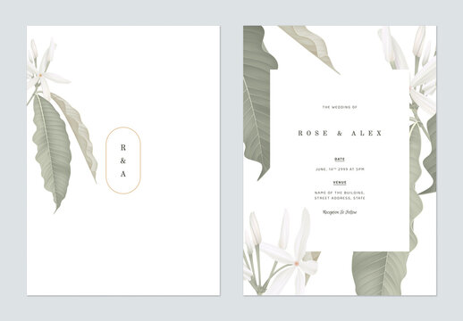 Floral wedding invitation card template design, Medicinal Kopsia flowers on white