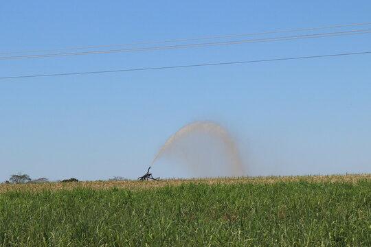 irrigation sprinkler irrigation