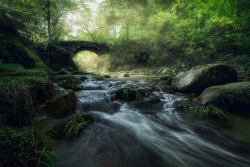 Narrow river with small cascade and stony shore streaming through foggy forest with green trees and ancient stone bridge