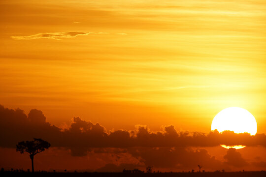 Democratic Republic Of Congo, Garamba National Park at moody sunset