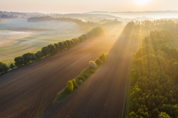 Germany, Bavaria, Icking, Drone view of countryside field at foggy sunrise