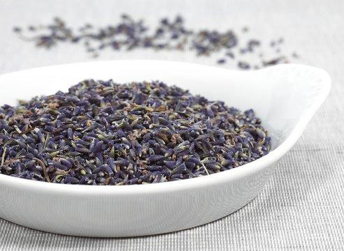 Lavender, lavandula sp, Dry Seeds