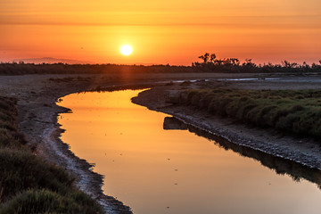 Coucher de soleil sur un paysage de Camargue -  Sunset on Camargue landscape