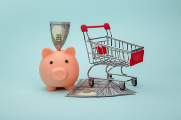 Piggy bank with money banknotes and trolley on blue background.