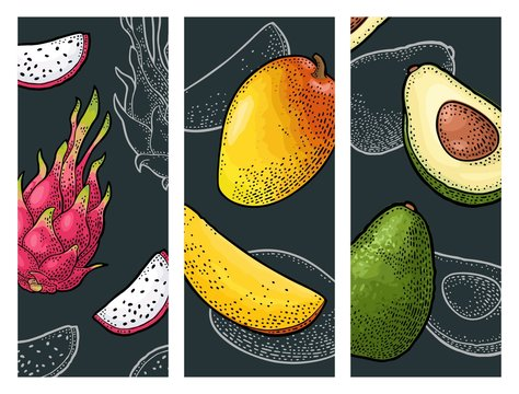 Set tropical fruits. Vector color and monochrome vintage engraving