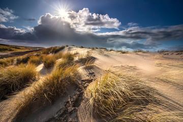 sunshine over sand dunes at sea coast