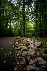 Outdoors trail walk