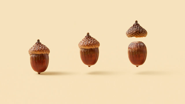 Flying acorns with soft shadows.