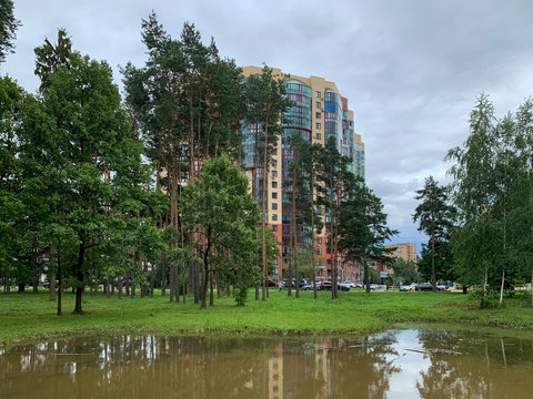 lake in the park, urban view