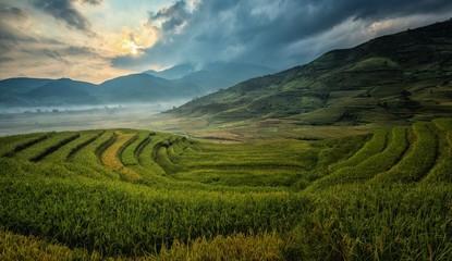 Fotobehang Rijstvelden terraced rice field