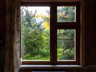 view of overgrown backyard through window in summerhouse at summer sunset