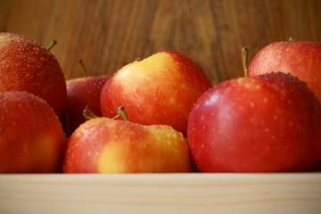 Obraz apples - fototapety do salonu