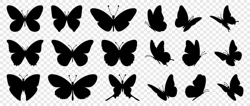 Flying butterflies silhouette black set isolated on transparent background