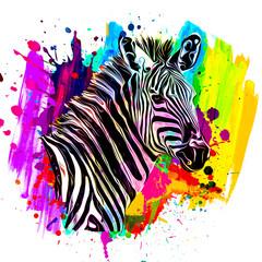 zebra with colorful stripes
