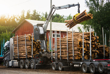 Loading of timber on railway carriages. Loader in work