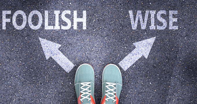 Foolish and wise as different choices in life - pictured as words Foolish, wise on a road to symbolize making decision and picking either Foolish or wise as an option, 3d illustration