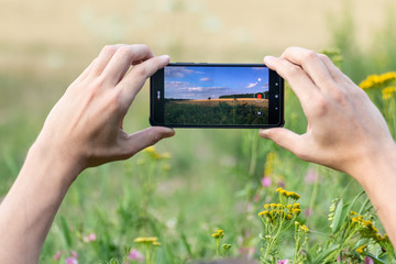 Holding smart phone with two hands horizontally and taking photos of summer wheat field summer sunny nature landscape