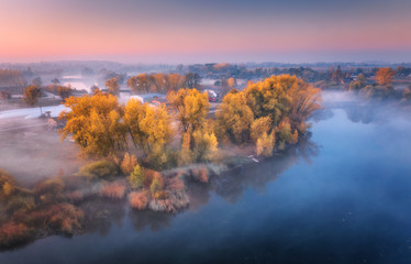 Aerial view of foggy trees on the river coast at sunrise in autumn. Colorful landscape with forest in low clouds, lake, meadow in fog, pink sky, village in the morning in fall. Top view. Nature