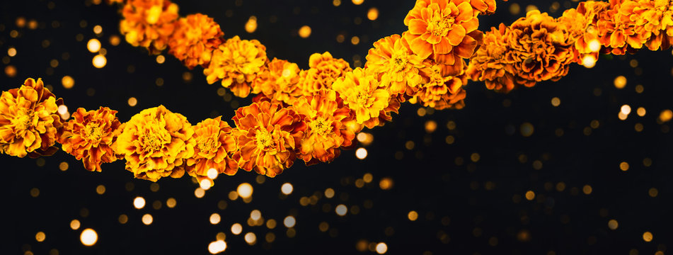 Marigold flowers Garlands on black. Dia de los muertos day, day of the dead or halloween banner, copy space