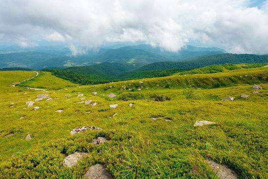 summer landscape of runa mountain. grassy hills of alpine meadow (polonyna). beautiful destination of ukrainian carpathians. clouds on the sky