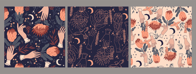 Set of seamless patterns with birds, protea flowers and hands. Vector graphics.