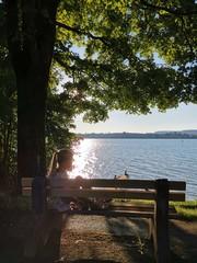 Kind schaut verträumt auf einen See bei Sonnenuntergang