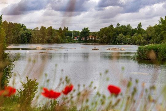 Champs de coquelicot avec un lac en arrière plan