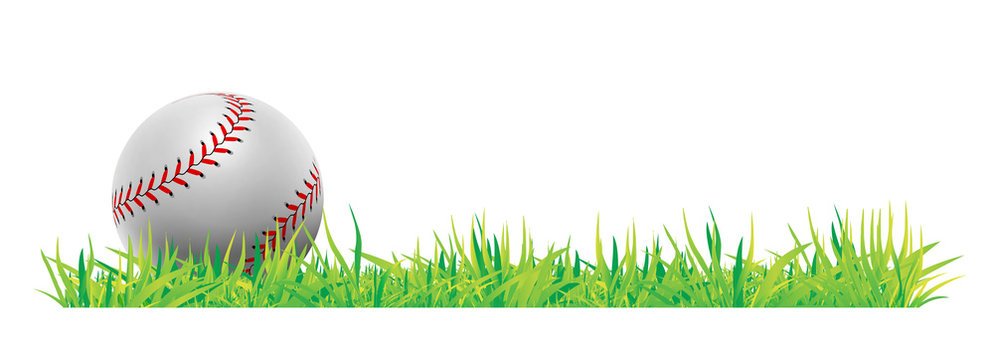 Baseball ball with green grass on white background. Vector