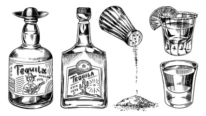 Tequila bottles and salt shaker. Glass Shots with Alcoholic Drink and Lime. Engraved hand drawn vintage sketch. Woodcut style. Vector illustration for menu or poster.