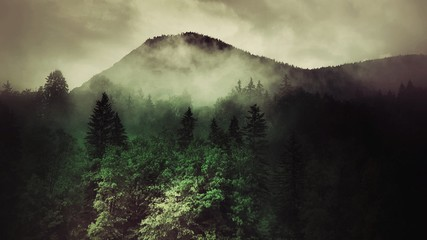 fog in the mountains in bavaria