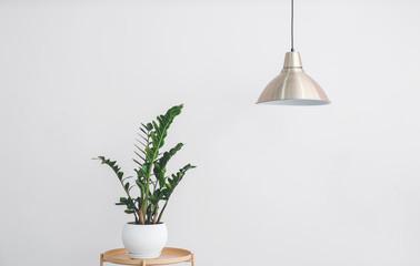 Stylish lamp hanging near light wall