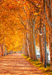Pathway at lake Balaton in autumn