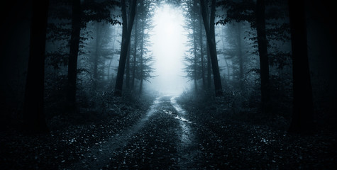 dark road through fantasy forest at night, scary halloween landscape