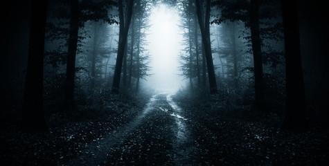dark road through fantasy forest at night, scary halloween landscape Fotobehang